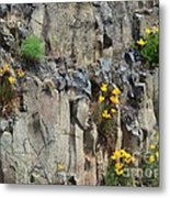 Poppies On The Cliff Metal Print