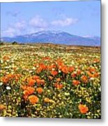 Poppies Over The Mountain Metal Print
