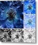 Poppy Blue - Macro Flowers Fine Art Photography Metal Print
