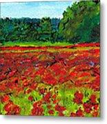 Poppy Fields Tuscany Metal Print