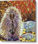 Porcupine On The Trail Metal Print by Harriet Peck Taylor