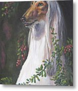 Portrait Of A Domino Afghan Hound Metal Print by Gayle Rene