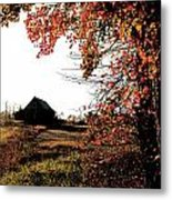 Portrait Of Autumn Metal Print