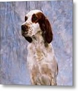 Portrait Of Irish Red And White Setter Metal Print
