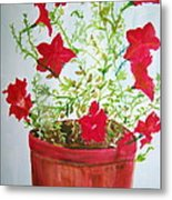 Pot Of Flowers Two Metal Print