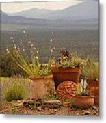 Pots And Vista Metal Print