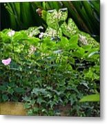 Potted Shades Of Green Metal Print