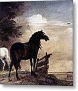 Potter: Horses, 1649 Metal Print