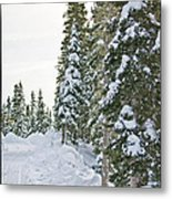 Powdery Snow Path Metal Print