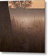 Prairie Pre Dawn Metal Print