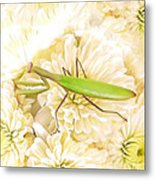 Praying Mantis On A Flower Boquet Metal Print