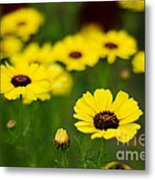 Pretty Yellow Metal Print