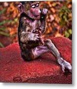 Primate Footsie Games Metal Print