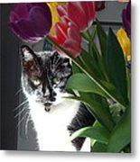 Princess The Cat And Tulips Metal Print