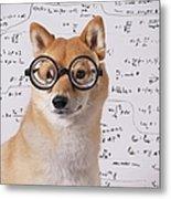 Professor Dog Metal Print