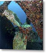 Propeller Of Hilma Hooker Shipwreck Metal Print