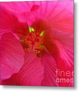 Protection From The Sun Metal Print