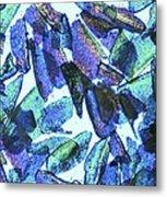 Psyllium, Light Micrograph Metal Print by Pasieka
