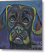 Puggle In Abstract Metal Print