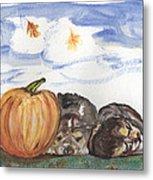 Pumpkin And Puppies Metal Print by Pamela Wilson