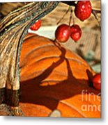 Pumpkin Berries Metal Print