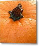 Pumpkin Dew Metal Print