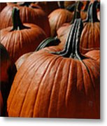 Pumpkin Harvest 1 Metal Print