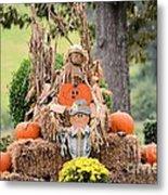 Pumpkin Harvest 2012 Metal Print