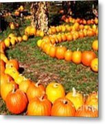 Pumpkin Patch Path Metal Print by Carol Groenen