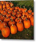 Pumpkin Piles Metal Print