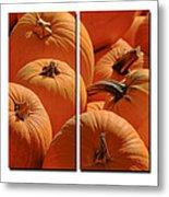 Pumpkin Pumpkin Metal Print
