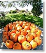 Pumpkin Round Metal Print