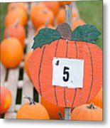 Pumpkins For Sale II Metal Print