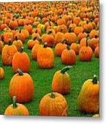 Pumpkins Forever Metal Print