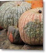 Pumpkins Galore V1 Metal Print
