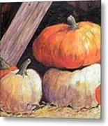 Pumpkins In Barn Metal Print
