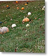 Pumpkins Metal Print by Susan Herber
