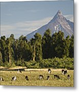 Puntiagudo Volcano In The Background Metal Print