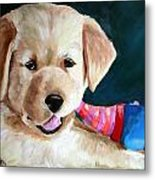 Pup And Toy Metal Print