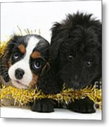 Puppies With Tinsel Metal Print