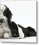 Puppy In Christmas Hat Metal Print