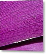 Pure Purple Metal Print