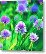 Purple And Green Chive Watercolor Metal Print