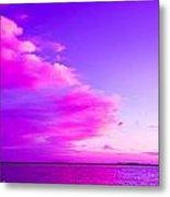 Purple And Pink Metal Print