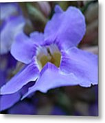 Purple Bokeh Metal Print
