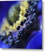 Purple Bulb Flower Metal Print