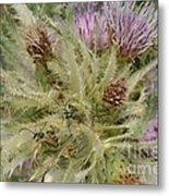 Purple Cacti With Pollinated Beetle Metal Print