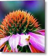 Purple Coneflower Delight Metal Print by Bill Tiepelman