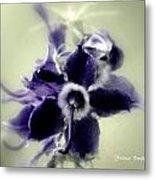 Purple Majesty Metal Print
