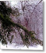 Purple Morning Frost Metal Print